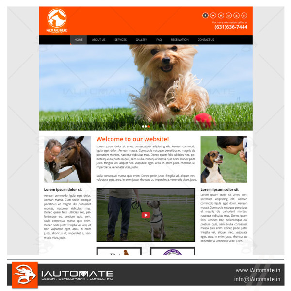 Dog Pet trainer web design and development