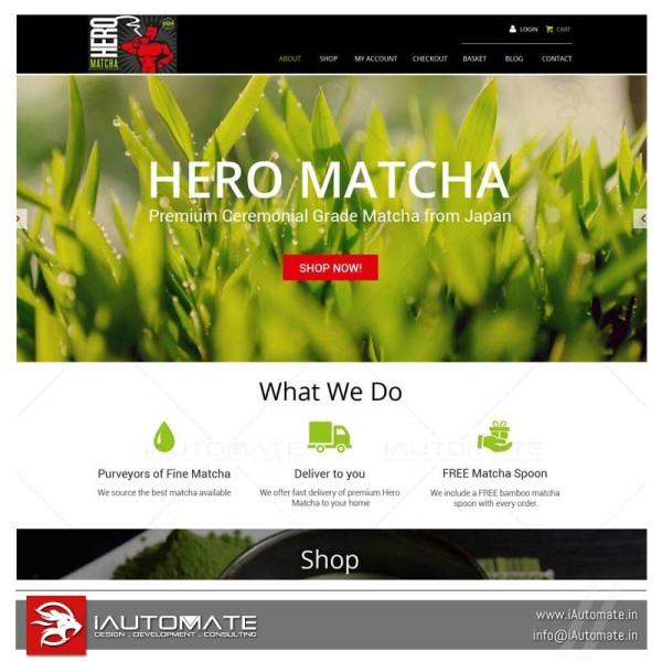 Matcha Dealer website design