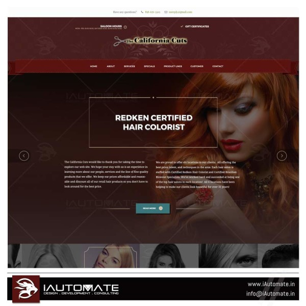 Salon Premium Web design