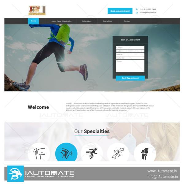 David G Levinsohn webdesign