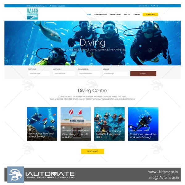 Hallsdiving wordpress website design