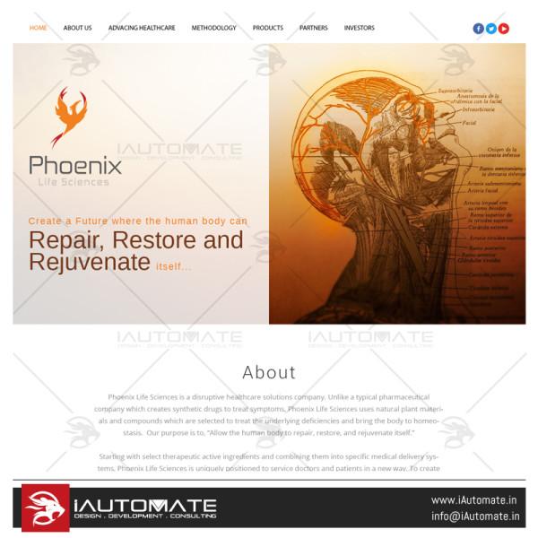 Phoenix Webdesign